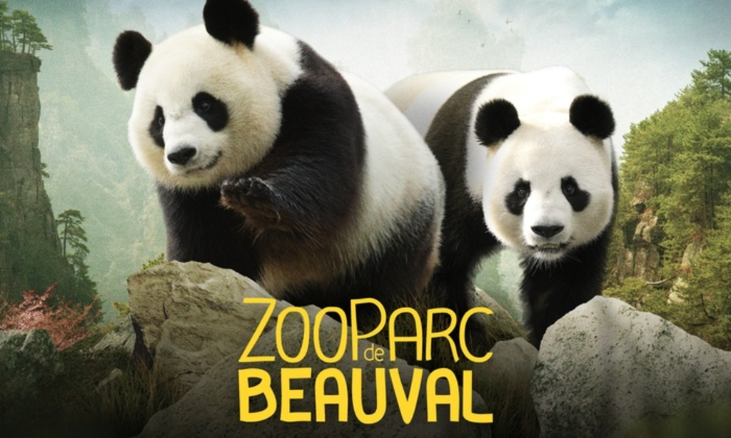 Zoo de Beauval 60 min