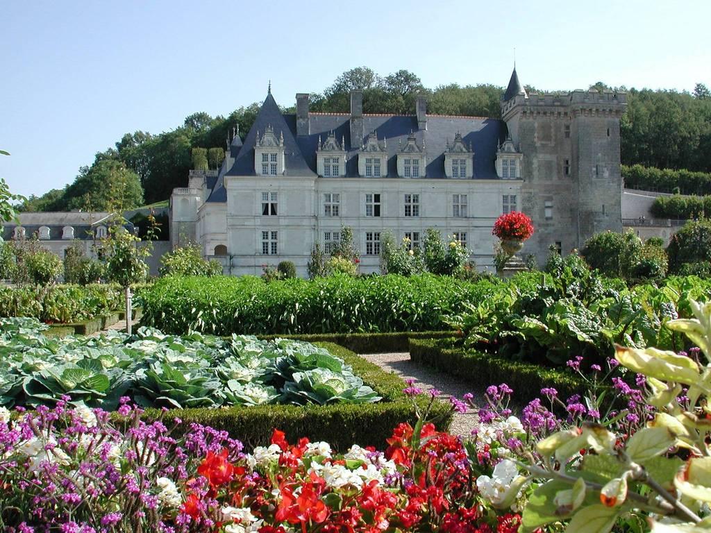 Villandry (15 km) french gardens