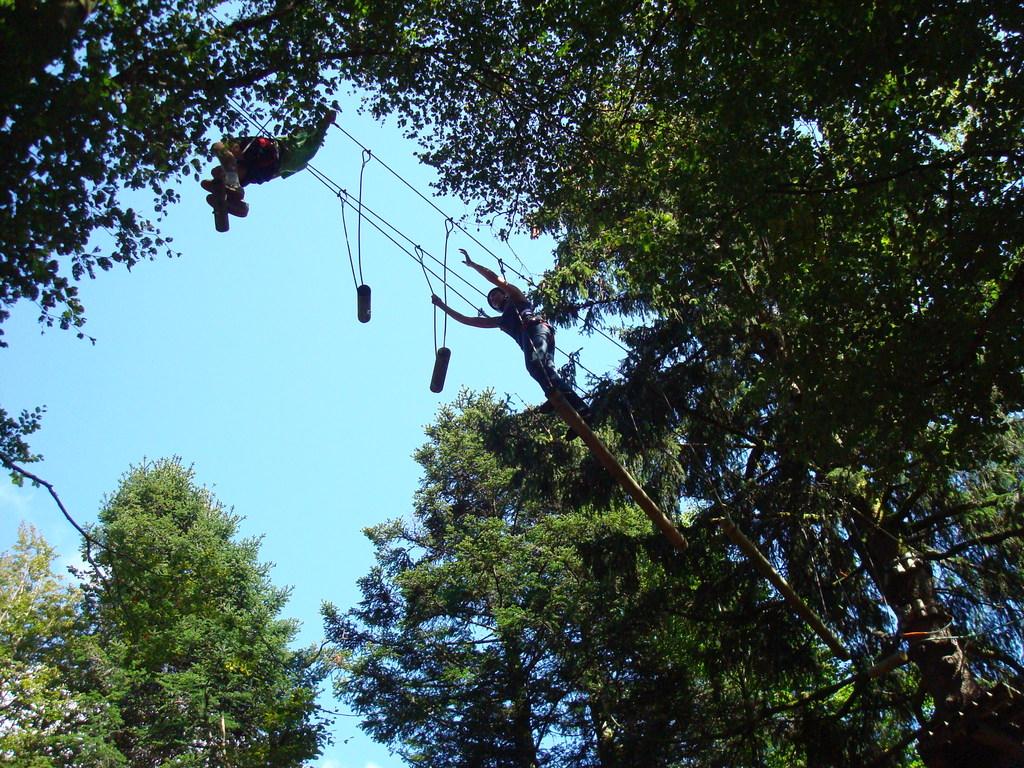 Les Vosges / Le Ballon d'Alsace : tree climbing.