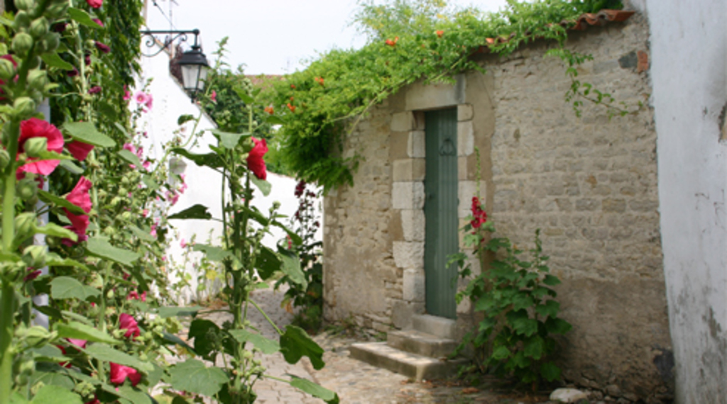 Village de St Martin de Ré ( 20 minutes de la maison en voiture)