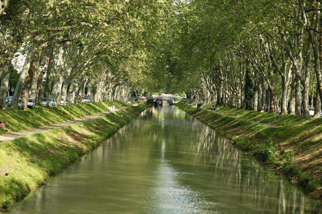 Toulouse : le canal du midi. Perfect for a little escape (running, biking, or just walking)