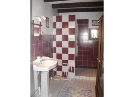 salle de bains  ( douche) #1