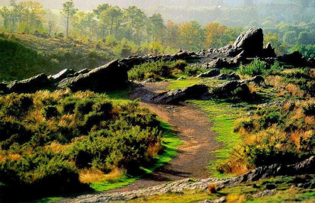 Brocéliande (Forêt, légendes) 35 km