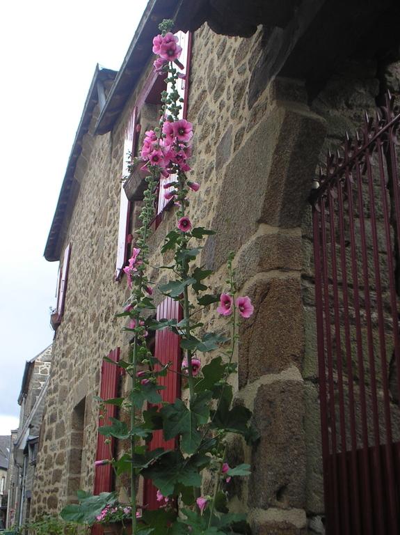 House in Lassay