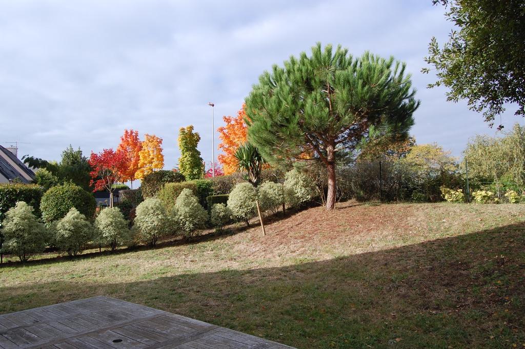 Jardin (350m2) / Garden