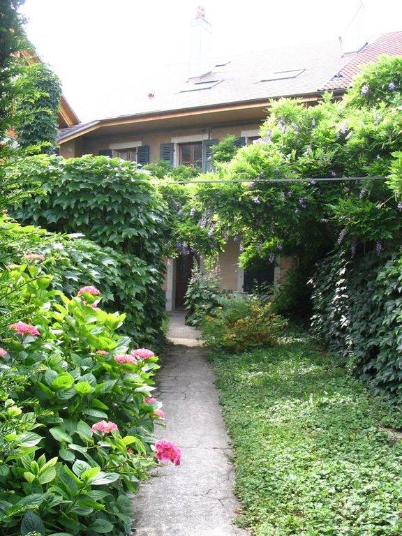 Jardin devant et entrée