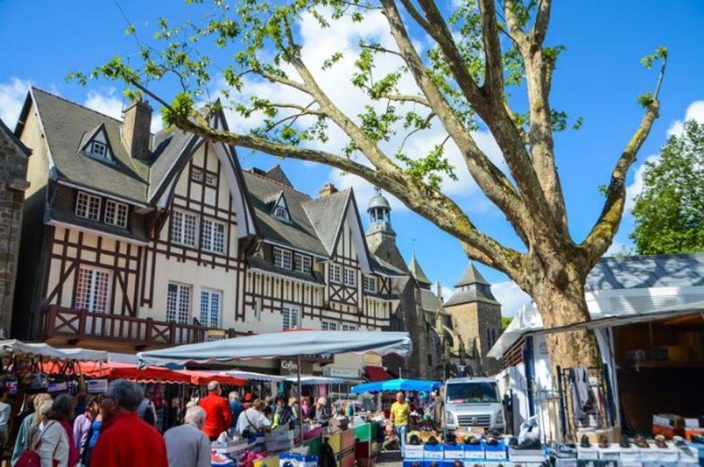 saint-brieuc main market (15' by foot)