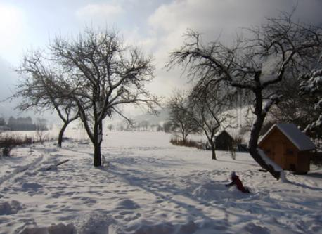 The garden in winter. Apple-trees, chalet for kids and a 4000m2 field.
