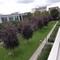 """vue du balcon de la salle à manger le Parc """"Malakoff"""" / View from the balcony"""