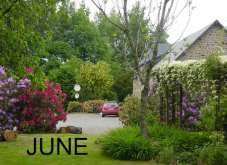 home in june