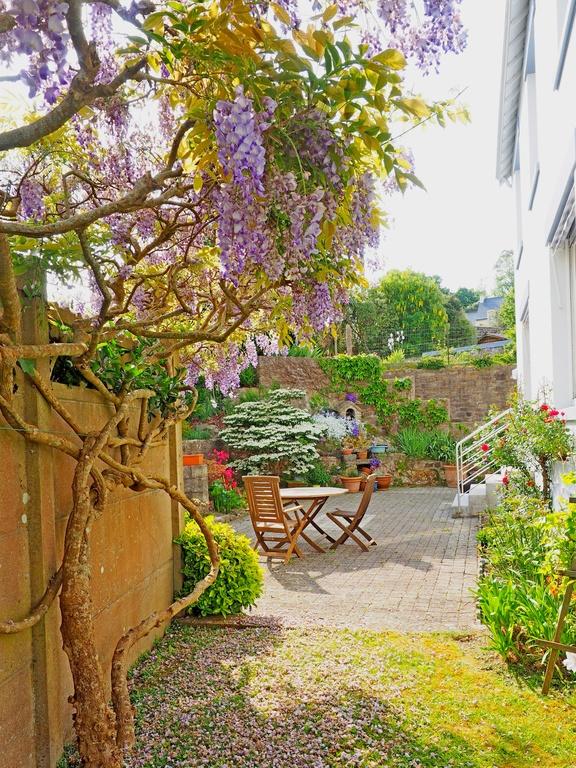 Le jardin et l.agréable terrasse sud