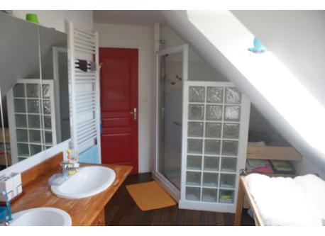Bathroom upstairs with shower + bathroom