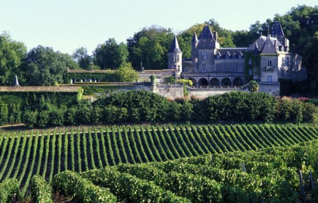 The wineyards near Bordeaux