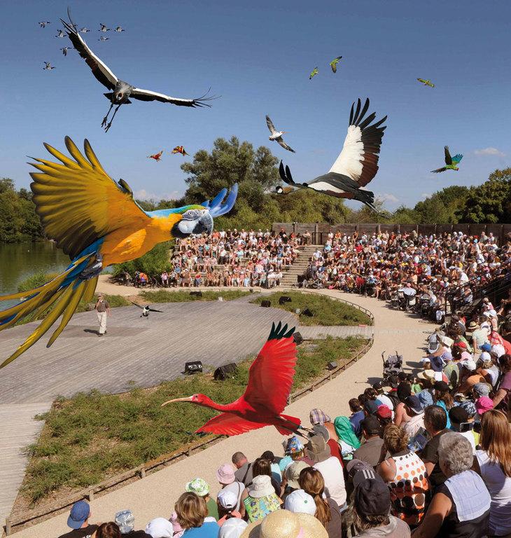 Parc des oiseaux (1 h 30 by car)