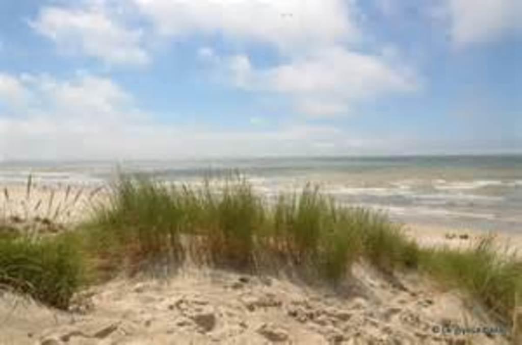 Opal Coast