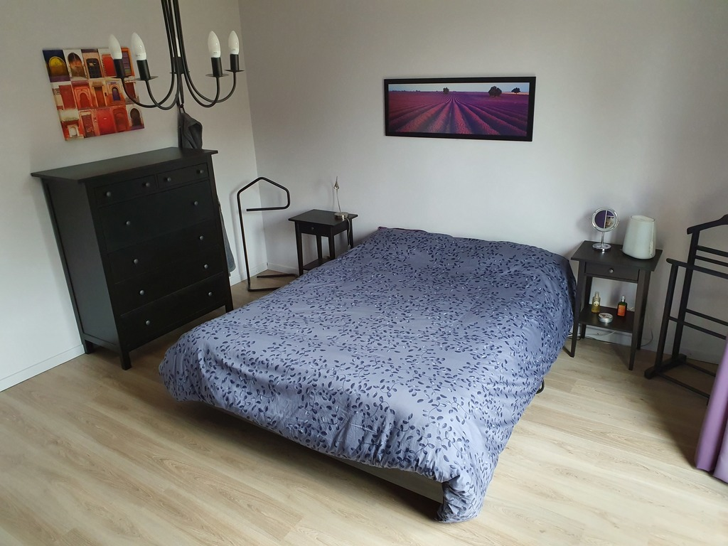 Master bedroom with queen size bed (adjustable electric bed)