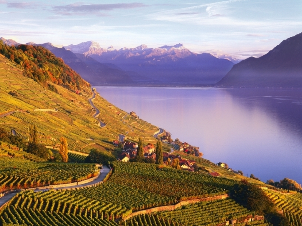 Lavaux vineyard terraces is a world heritage site, a gem! (50 minutes from the house)