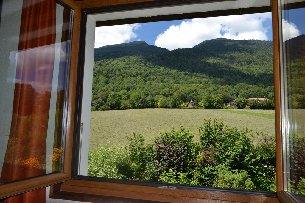 View on the Mont-Jura from the mezzanine in summer.