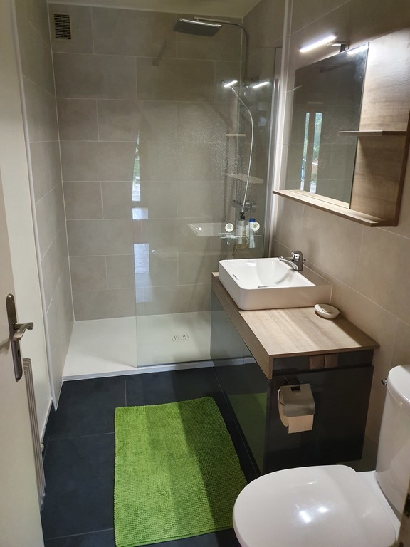 Shower room with toilet next to the guest room and single bedroom