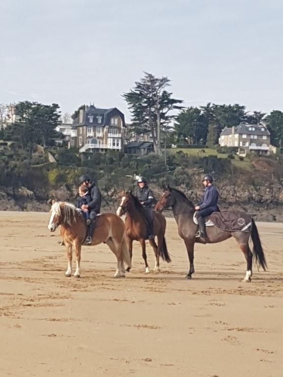 sortie équitation sur la grande plage