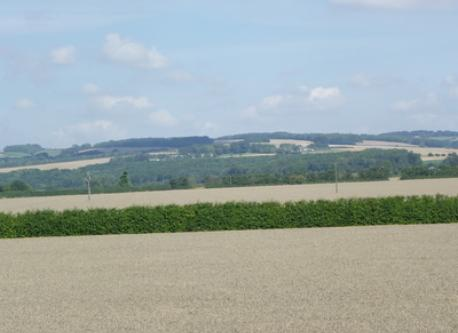 View of the Wolds from our bedroom window