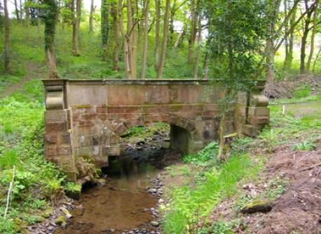 bridge over steam