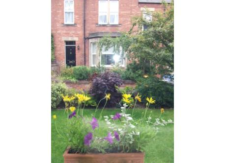 View onto front garden