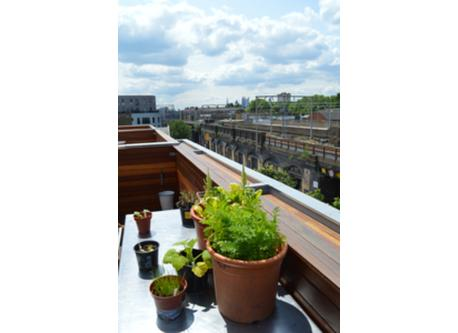 Roof terrace with views over London