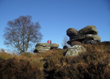 Brimham Rocks - National Trust