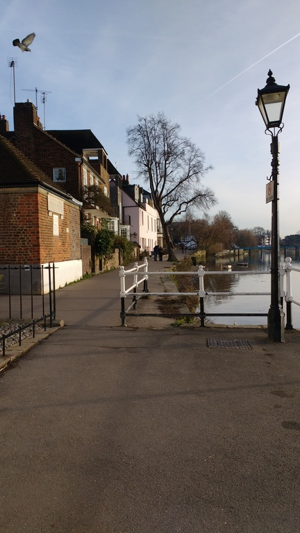 The River Thames at Strand-on-the-Green close to our house