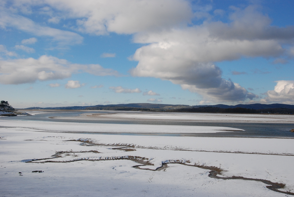 Kent estuary (winter)