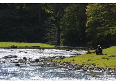River Bela