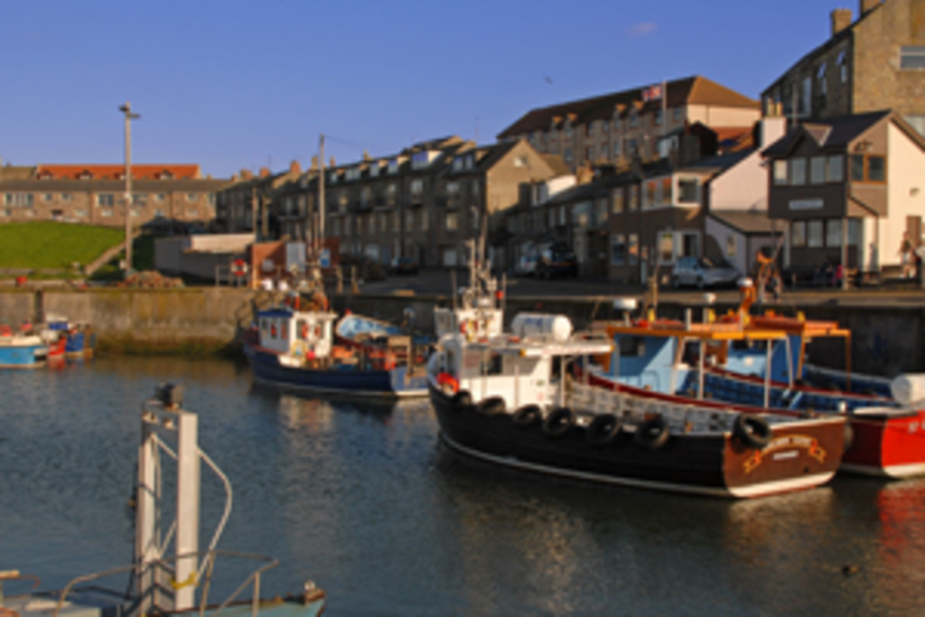 Seahouses Harbour, 30 minutes from house
