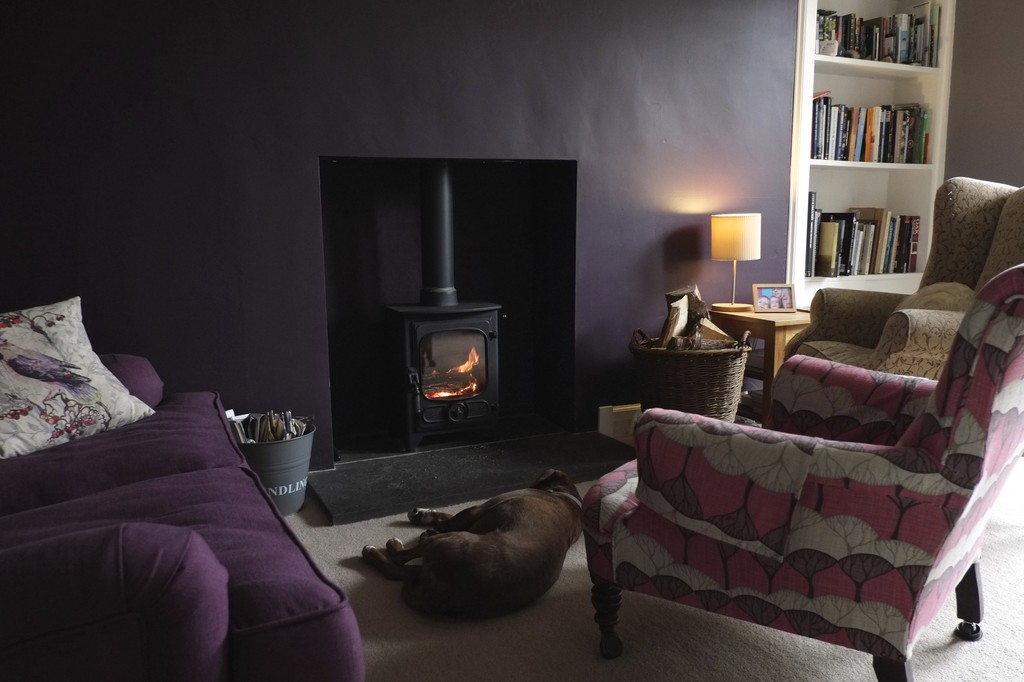 Sitting room with wood burning stove (dog not included)