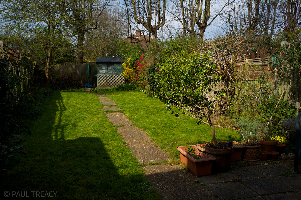 Back garden as seen from kitchen