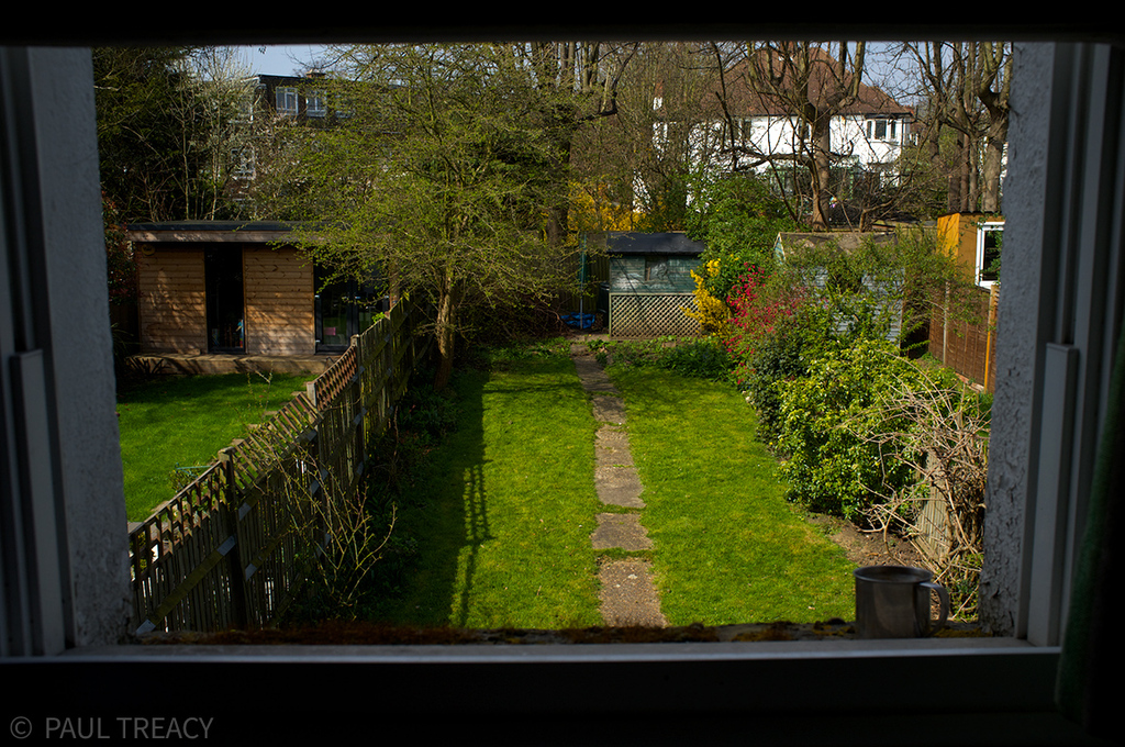 The garden as seen from Kitchen window
