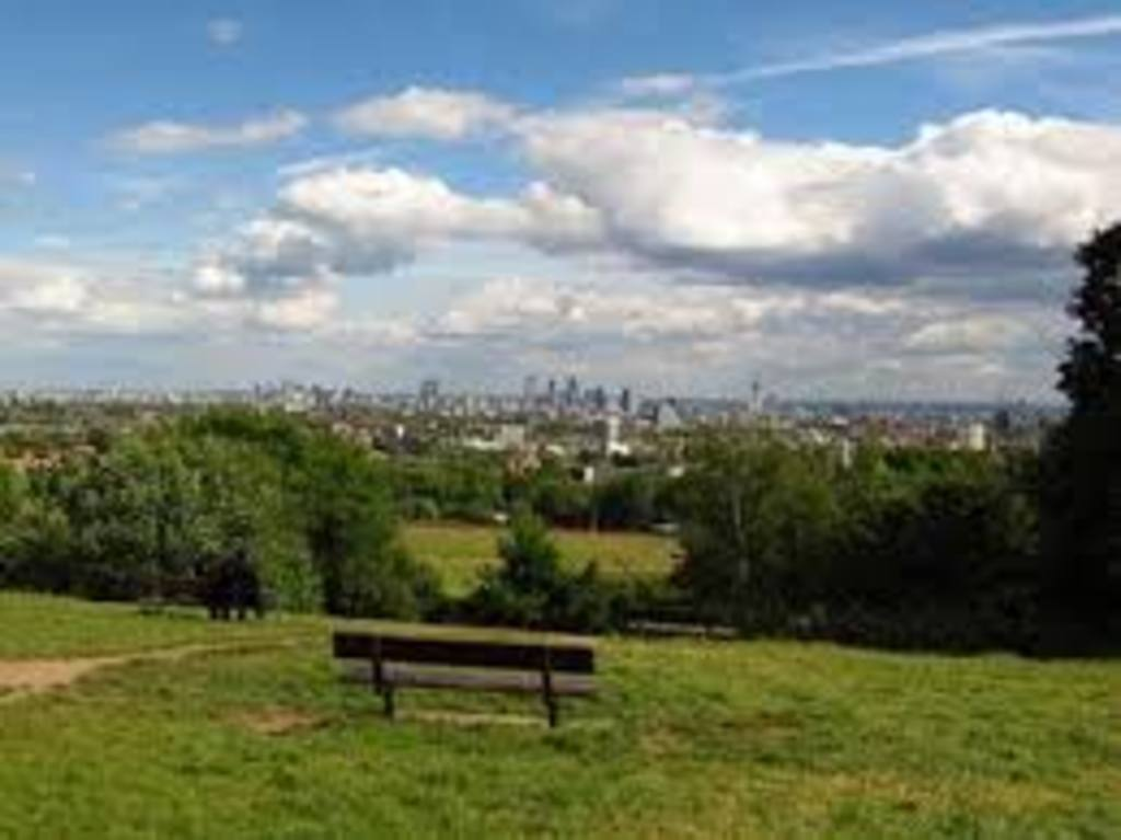 Hampstead Heath ( 8 minutes walk from house)