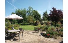 The south facing back garden