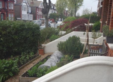 Small front garden with salad and herbs