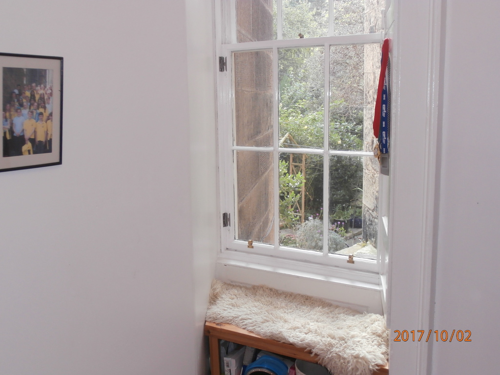 Douglas's quiet corner window