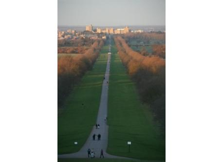The Long Walk, Windsor - one of my favourite runs from home