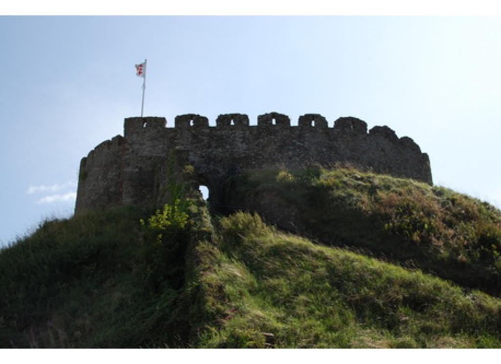 Totnes castle 25 minutes.