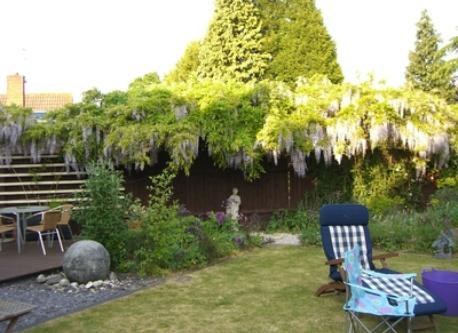 Garden May2011