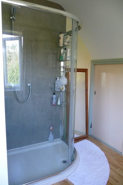 Automatic Power Shower