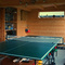 Music/Garden Room with full sized table tennis table