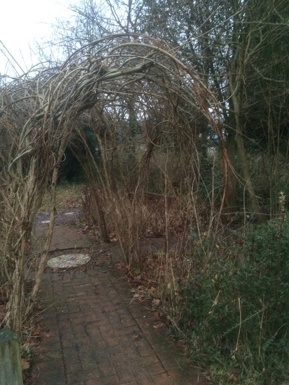 Willow archway into wildlife garden