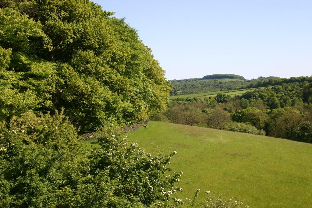 View from the Trans-Pennine Trail, which runs through the heart of Penistone