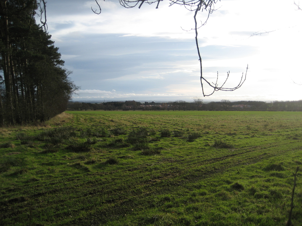 This is the rear of Badgers Hollow just farmland (january 2016)