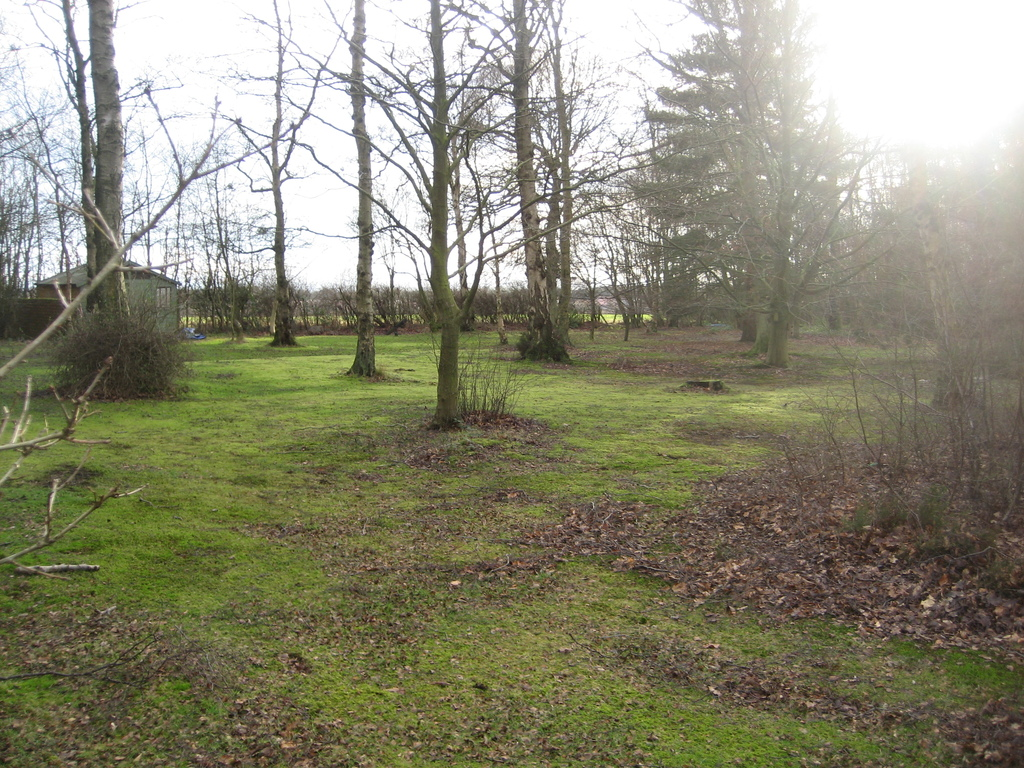 part of the garden area Badgers Hollow (jan 2016)