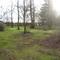 part of the garden area Badgers Hollow (jan 2016)